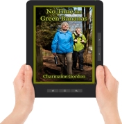 NTFGB ereader graphic with hands